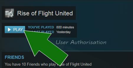 rise of flight invalid license key